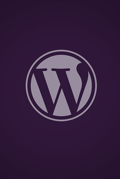 WordPress Theme Development Lahore Pakistan